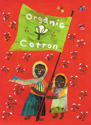 """オーガニックコットン畑 """"The field of organic cotton"""""""