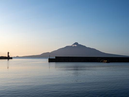 礼文島からの利尻富士