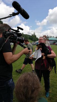 erster Platz und somit schnellster Dackel Bayerns - Flocki vom Schwindauer-Land