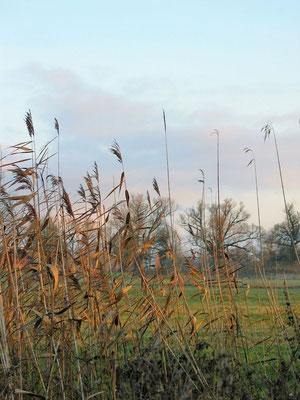Garz - Herbststimmung