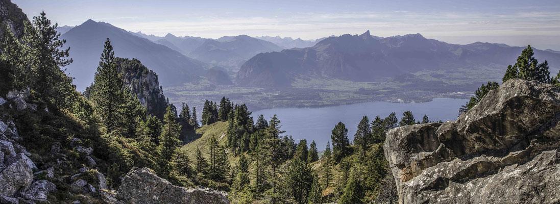 Blick vom Oberbärgli zur Stockhornkette