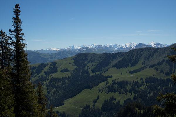 BLick vom Wolfsort in Richtung Berner Alpen