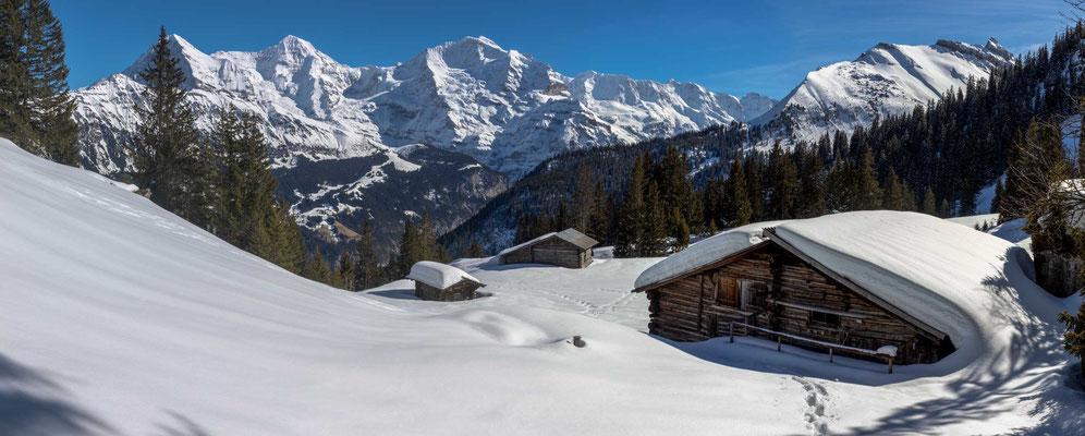 Die Alp Chüebodmi zegte sich von ihrer schönsten Seite