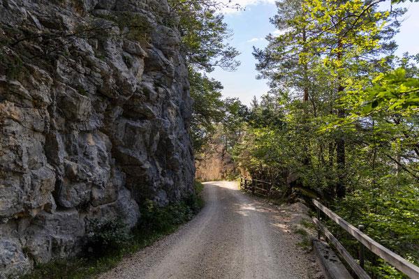 Die Bergstrasse auf den Bettlachberg