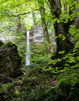 Und plötzlich sieht man durch die Blätter den Ruisseau de Vaux der über eine Felswand stürzt