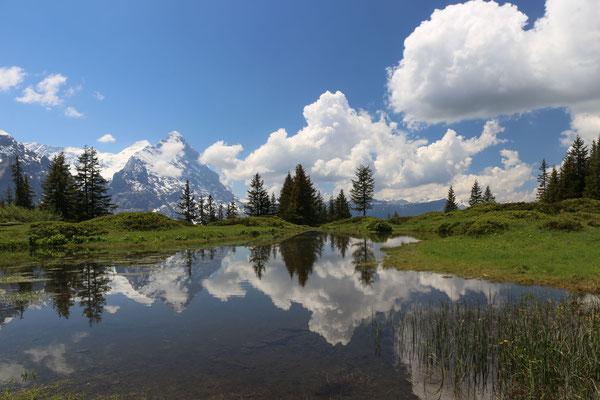 Wunderschön und doch fast unbekannt. Das ist der Auntseeuwen bei Grindelwald.