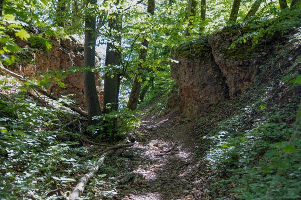 Die Römerstrasse vom Bötzberg