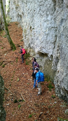In der Waldschlucht (Foto Nathalie Meyer)