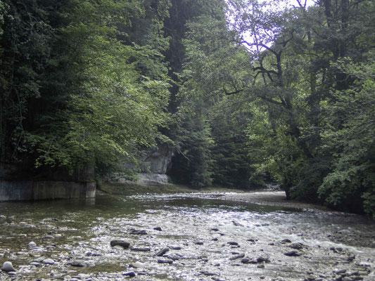 Die Sackau im Schwarzwassergraben