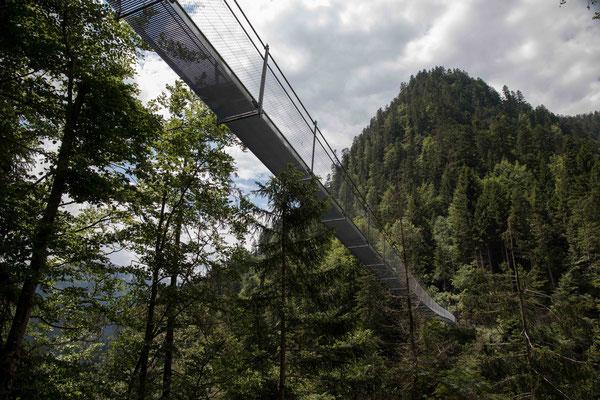 Hängebrücke Leiternweidli Simmental