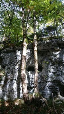 Die unbekannte Waldschlucht von Cremines (Foto Nathalie Meyer)