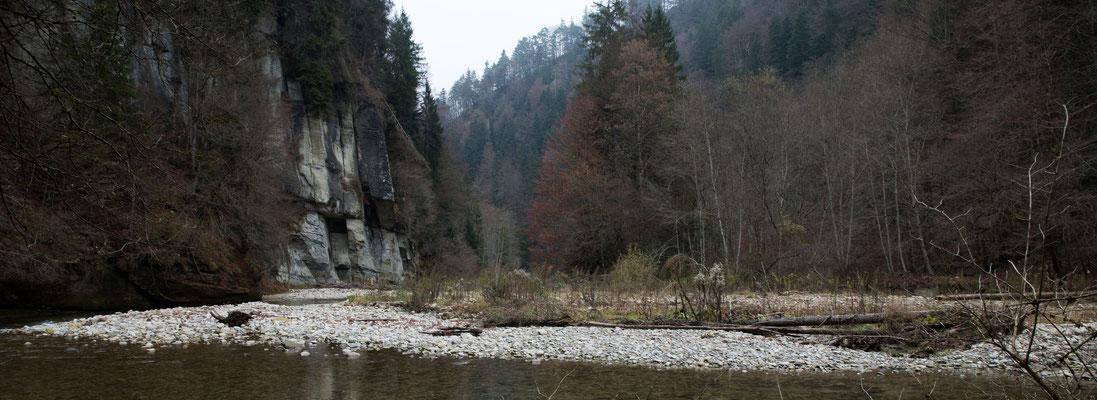 Ein letztes mal überqueren wir das Schwarzwasser über den Burgbachsteg in der Steiglenau