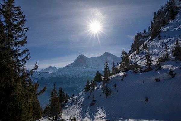 Morgenstimmung bei der Alp Suls