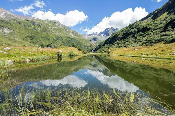 Dem Halsesee fast zuhinterst im Walliser Binntal schliesst sich ein Flachmoor an. Diverse seltene Pflanzen und Amphibien sind dort zu sehen.