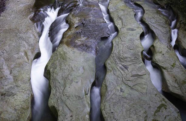 Kunstwerk der Natur unter der Schwarzwasserbrücke