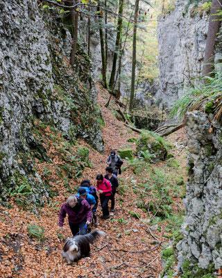 Im Aufstieg zur Eiche von Cremines.