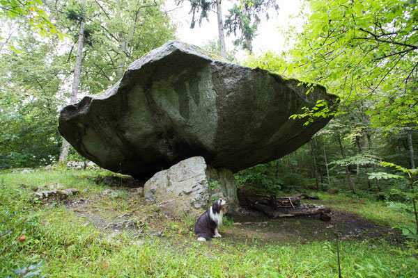 Der Holestein liegt oberhalb von Twann am Bielersee. Er war  im Altertum vermutlich ein Kultplatz, oder Opferplatz. Auf der Oberseite existieren bearbeitete Flächen.
