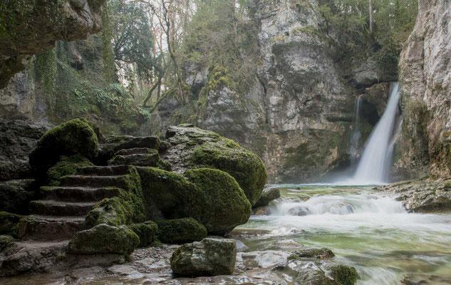 Der Tine de Conflens bei La Sarraz