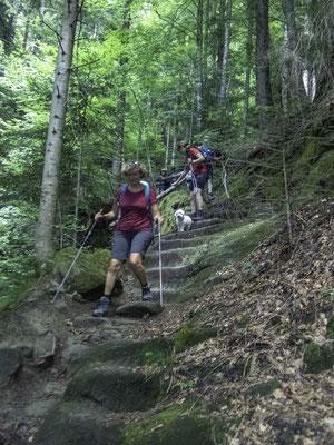 Auf dem hystorischen Weg hinunter in die Steiglenau im Schwarzawassergraben
