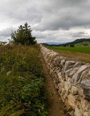 Alte Juramauer auf der Wandfluh