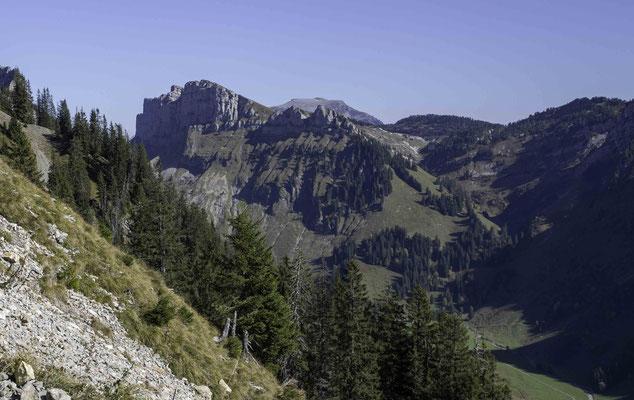 Die 7 Hengste, Im Hintergrund der Hohgant und das Seefeld bei Habkern