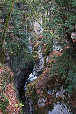 Die Gorge de L' Areuse ist teilweise sehr eng.
