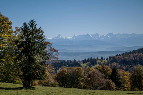 Sicht vom Place Centrale in Les Pres-d' Orvin zu den Berner Alpen