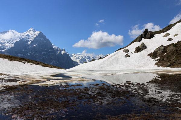 Das Hornseewli in der Nähe von Grindelwald ist vielfach noch Mitte Juni von Schnee und Eis bedeckt.