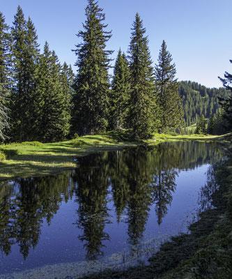 Natursschutzgebiet Hohgant Seefeld