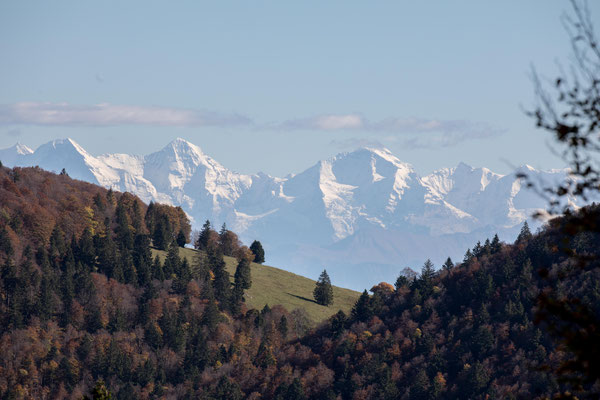 Auch bei Cledar de Pierrefeu sieht man die Berner Alpen