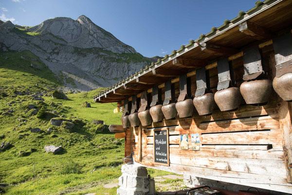 Auf der Alp Suls