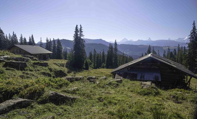 Die Alphütten des hinteren Seefeld