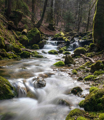 Le Ruisseau de Breuil