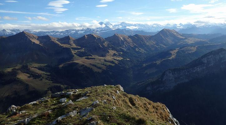 Blick vom Schibegütsch zu den Berner Alpen