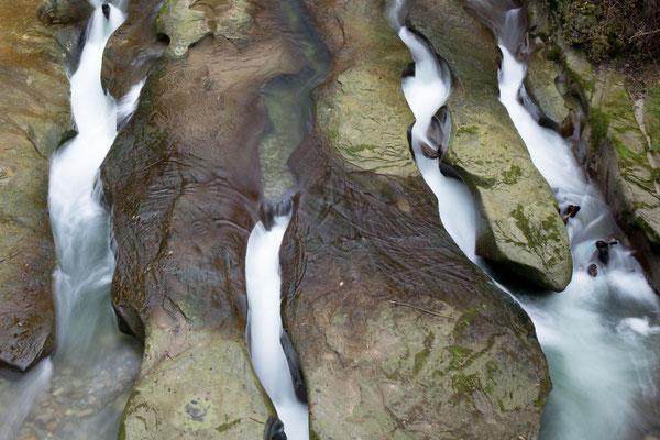 Naturkunstwerk unter der alten Schwarzwasserbrücke im Schwarzwassergraben