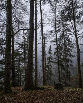 Mystische Stimmung im Schlosschälen