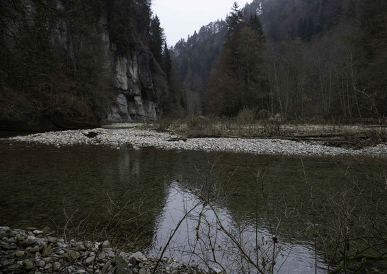 Naturparadies Steiglenau