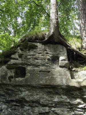 Das Druidenrefugium im Schwarzwassergraben