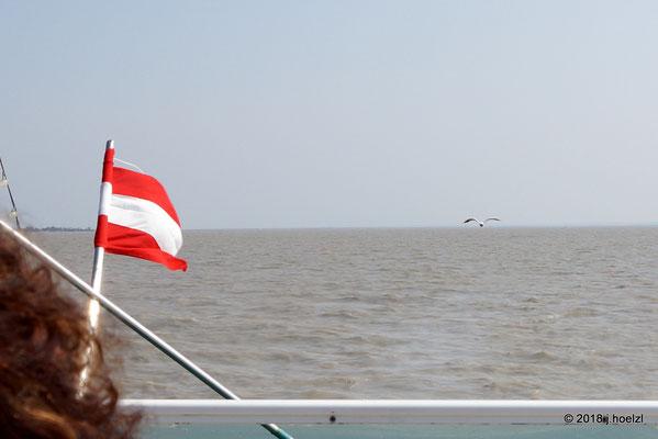 Schiffsrundfahrt am Neusiedler See