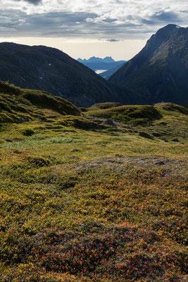 Auf Riddabårre, Blick auf Muskvika und Mannfjorden