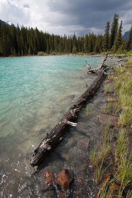 Cephren Lake, Banff-NP