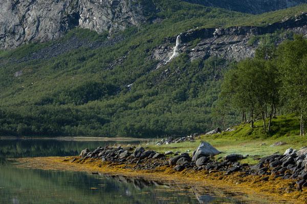 Lappøyra am Sjunkfjorden mit Elvhammaren
