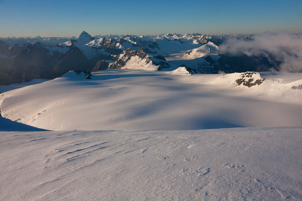 Lyell-Icefield from Lyell Peak 1