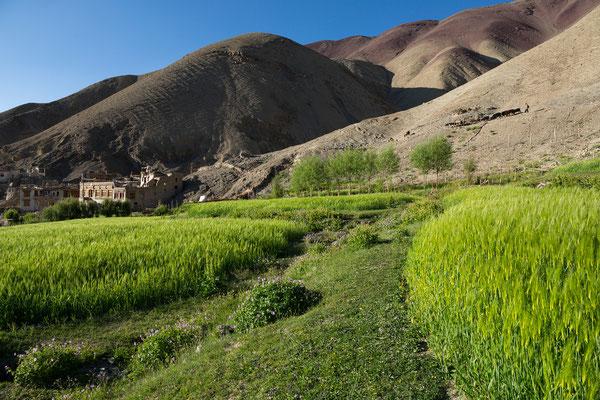Rumbak, Ladakh