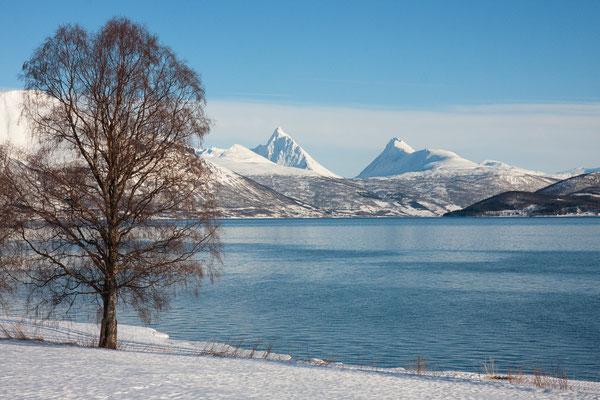 Balsfjord, Piggtind, Troms, Norwegen