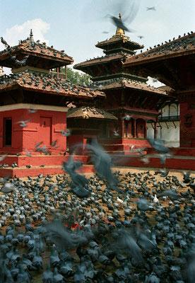 Jagannath Tempel, Kathmandu, Nepal