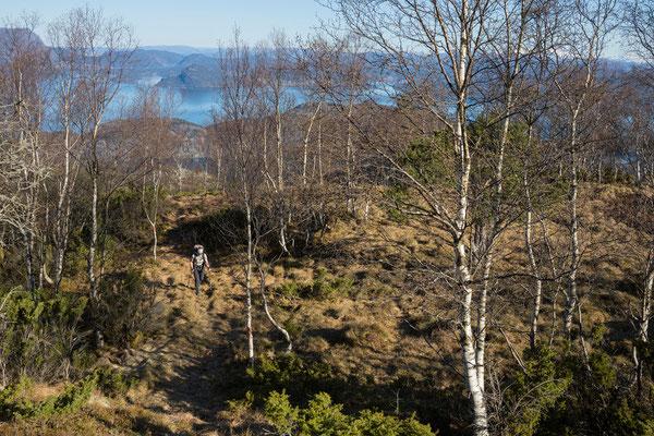 Aufstieg zum Manen, Kvinnheradsfjord