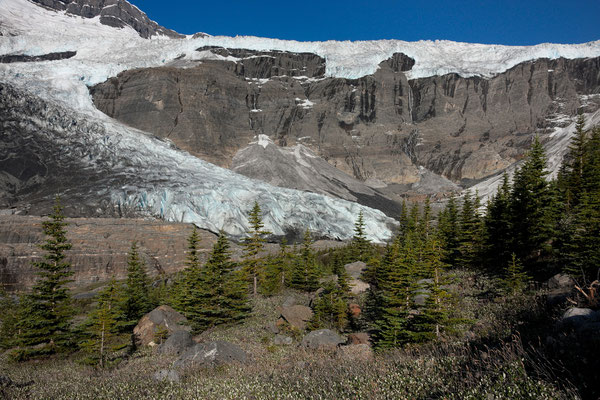 South East Lyell-Glacier