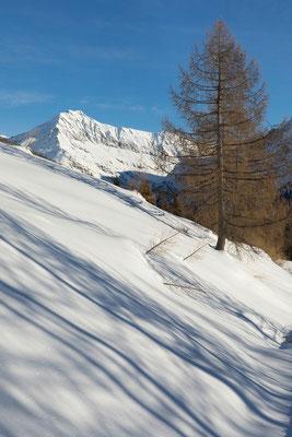Alpe di Cascinarsa und I Rodond, Calanca