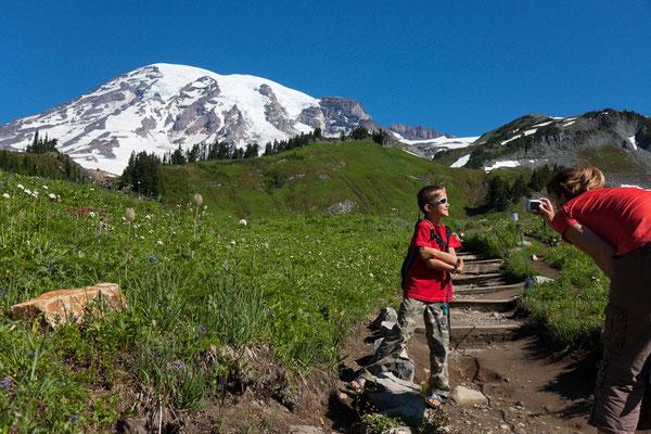 Mt Rainier, Paradise
